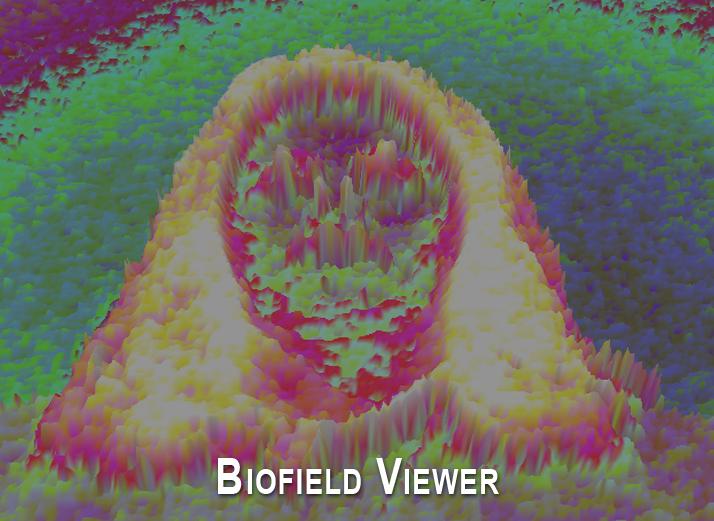 portfolio3-biofieldviewer